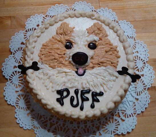 Three Dog Bakery Vancouver Dog Birthday Cakes Personalized